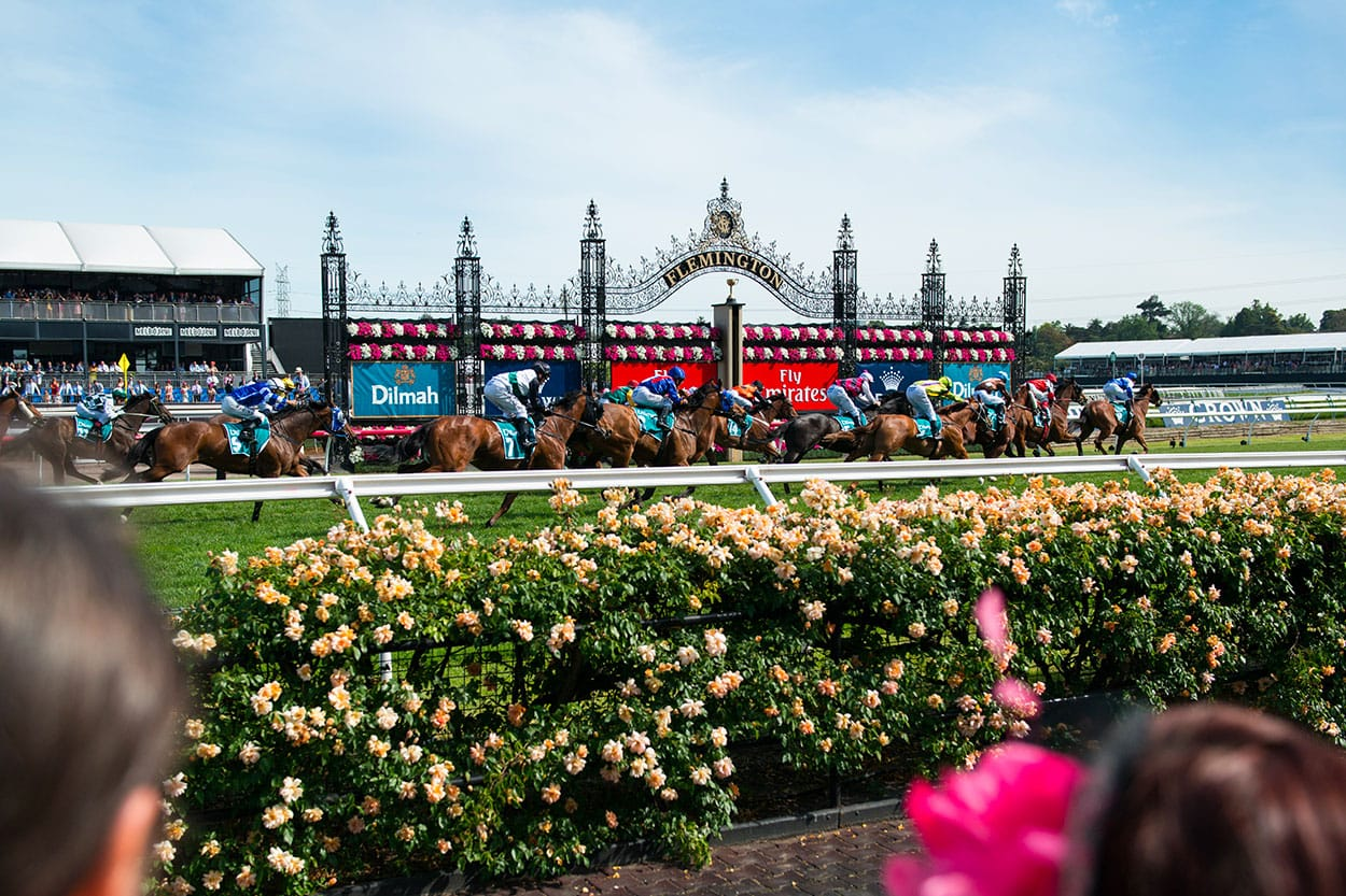 The Melbourne Cup & Spring Rac...
